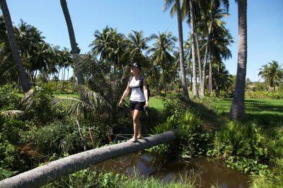 Med sprehodom po riževih poljih marsikdaj prečkaš namakalne kanale kar po podrtih kokosovih drevesih