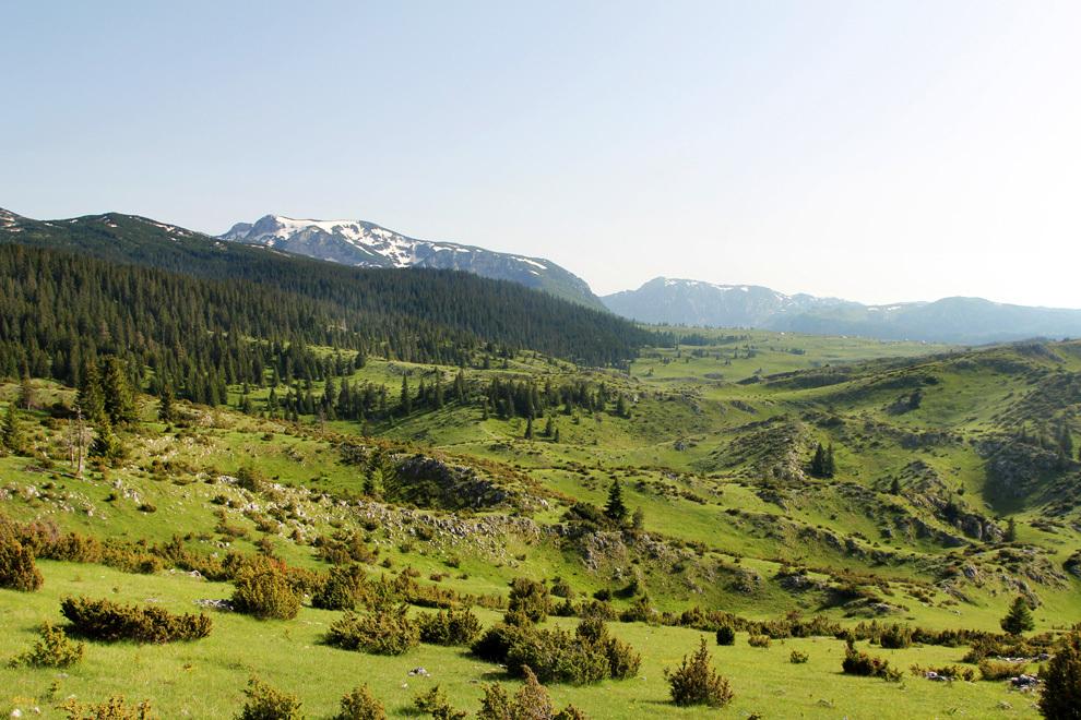 Prvi pogled na gorsko planoto, ki nas pripelje do Žabljaka
