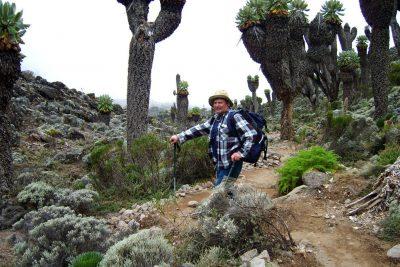 Vzpon na Kilimanjaro po poti Machame