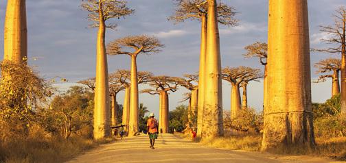 Madagaskar – potovanje