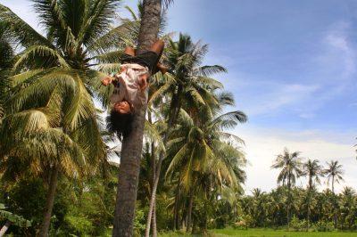 Ko po sveže kokose pošlješ razigrane mladeniče ...