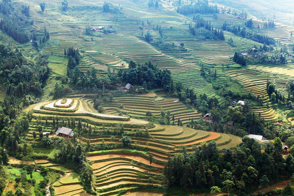 Tudi na severu države, kjer je malo ravnin, ljudje pridelujejo riž na značilnih stopničastih poljih