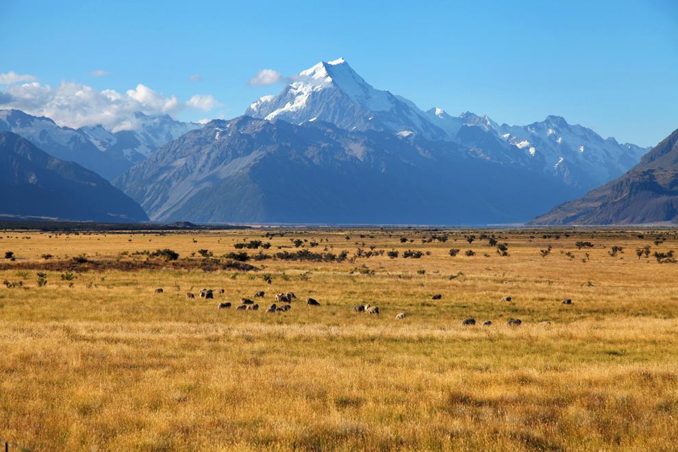Ogromna ledeniška dolina pred Mt Cookom