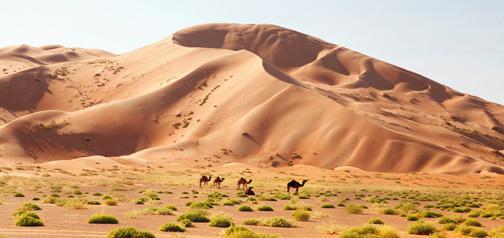 Oman – Potovanje z džipi za novo leto