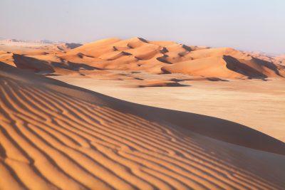 Sipine v puščavi Rub al Khali
