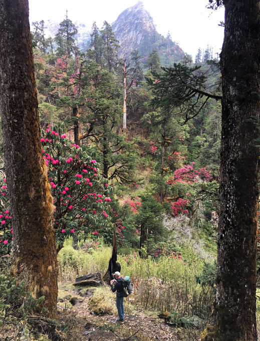 Kopra treking Nepal