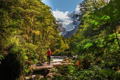Deževni gozd in ledeniki v čilenski Patagoniji