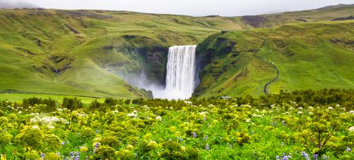 Islandija z avti